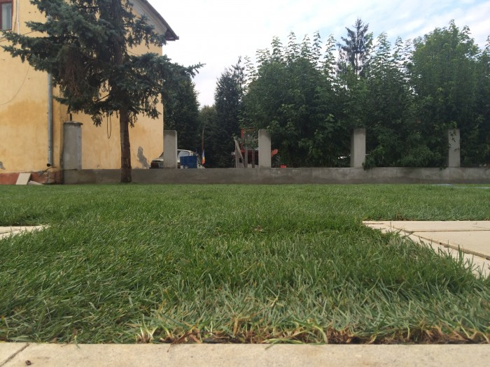 PARCUL din Beclean prinde contur! Primele rulouri de gazon s-au pus deja! – FOTO