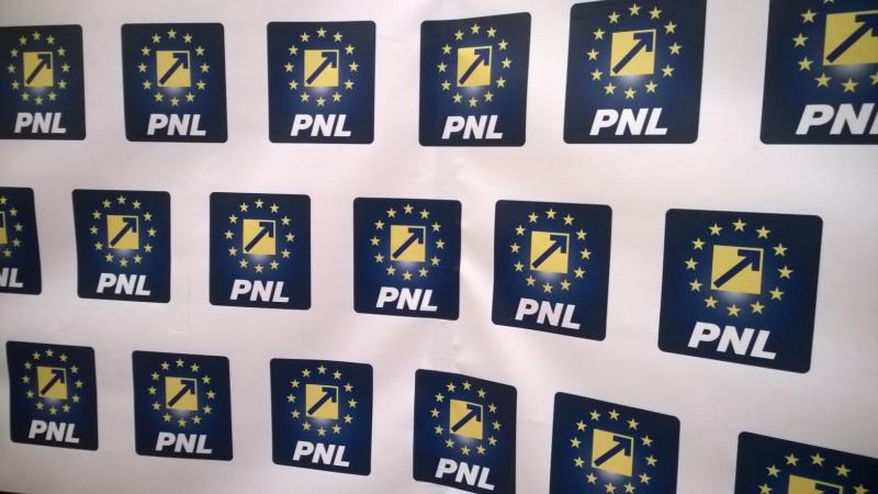 Cine sunt liberalii care vor candida la alegerile parlamentare pentru funcțiile de deputați și senatori