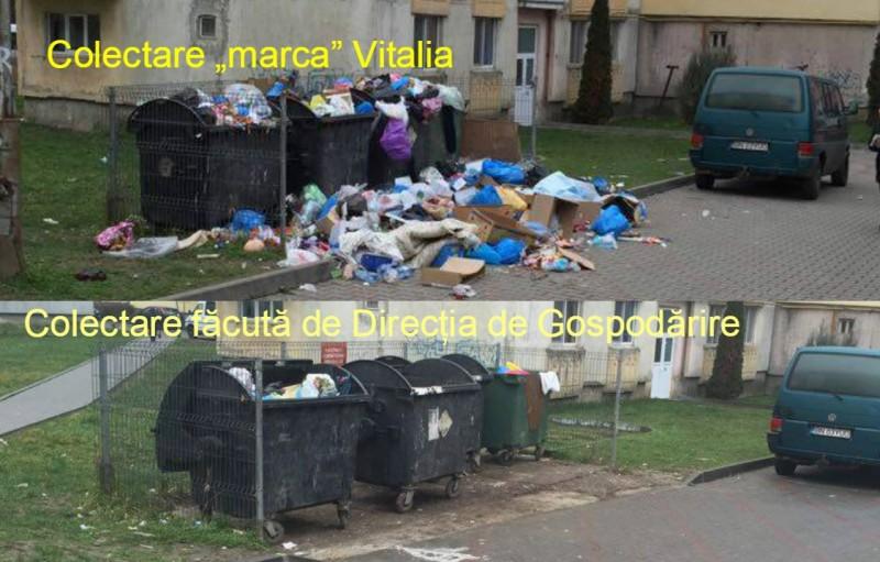 Vitalia nu mai colectează gunoaiele din tot județul, începând de azi! Cine se va ocupa de ridicarea deșeurilor la Beclean