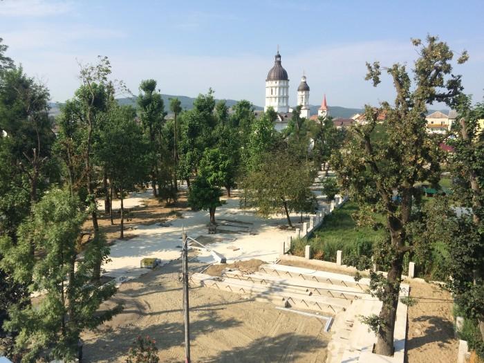 Fiica regretatului profesor de biologie Matei Mureșan din Beclean, extrem de revoltată pe autorități din cauza felului în care s-au toaletat arborii din parc – FOTO