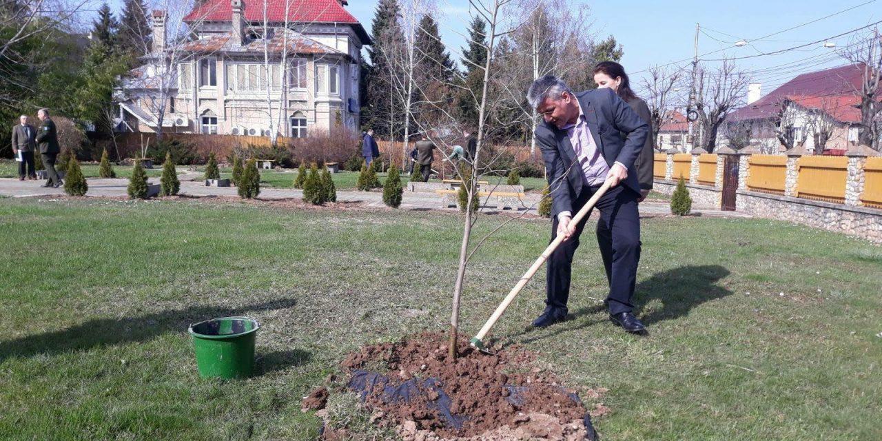 """Mesajul important transmis de ministrul Ioan Deneș: """"Astăzi trebuie să ajutăm pădurea să se regenereze"""""""