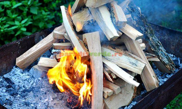 Unde este interzis să facem focul de grătar în aer liber și de ce. Recomandări de la pompieri special pentru 1 Mai