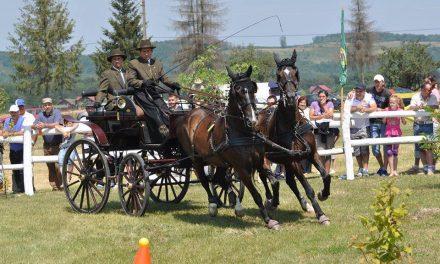 Iată când va avea loc la Herghelia Beclean Campionatul Naţional de Atelaje cu doi cai și ce probe vor fi în zilele de concurs