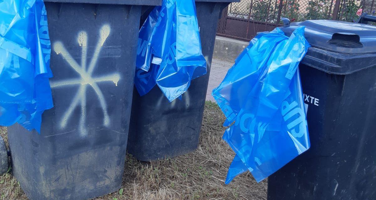 """Care este calendarul pentru ridicarea gunoiului, după intrarea în vigoare a legislației privind colectarea selectivă. Ce înseamnă """"săptămâna plină""""."""